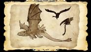 Dragons BOD NightFury Gallery Image 01