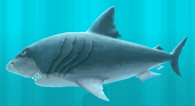 Megalodon | Wiki Hungry shark | FANDOM powered by Wikia