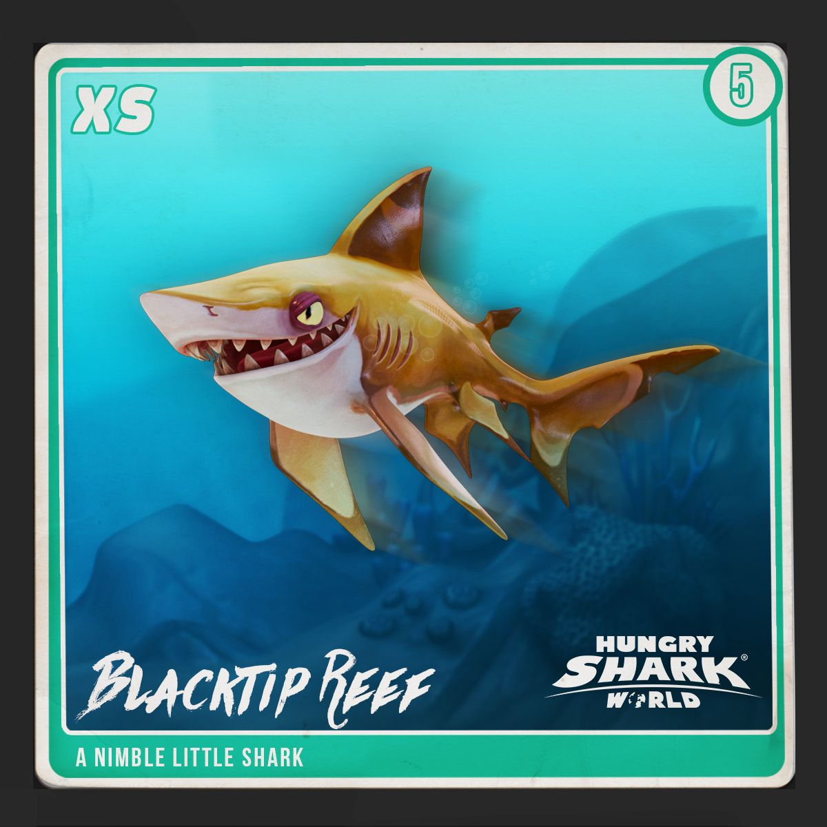 Blacktip reef shark hungry shark wiki fandom powered for Tiger strike fish game cheats