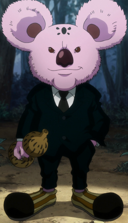 Koala anime