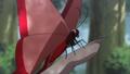 Butterfly zevil