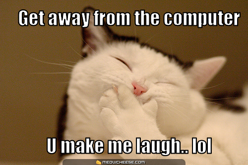 File:Laughing-cat.jpg