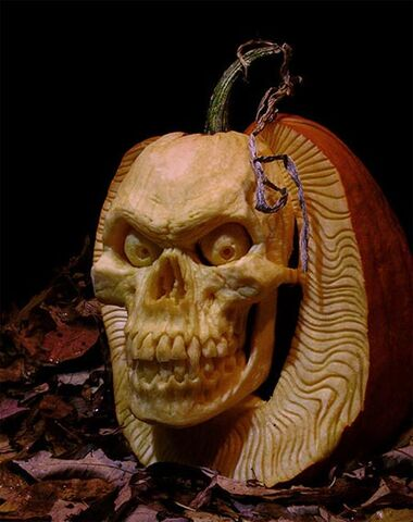 File:Pumpkin-2.jpg