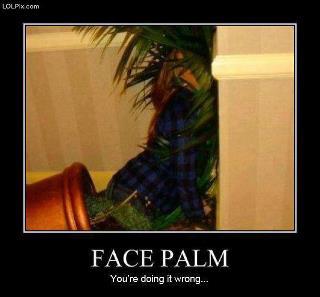 File:Face Palm.jpg