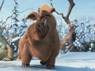 Aardvark (5)