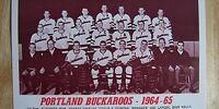 1964-65 WHL (minor pro) Season