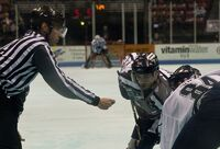 S.C. Stingrays vs. Florida Everblades - face-off