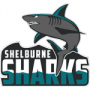 Shelburne Sharks
