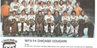 1973–74 Chicago Cougars season
