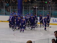 Slovakia men's ice hockey team in 2002