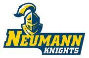 Neuman Knights logo