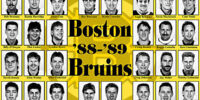 1988–89 Boston Bruins season