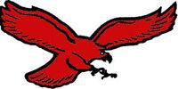 Carolina Thunderbirds