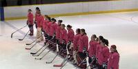 2011 in women's ice hockey