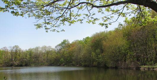 File:Pennsauken Township, New Jersey.jpg