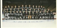 1994–95 Los Angeles Kings season