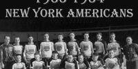 1933–34 New York Americans season