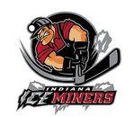 Iceminers logo
