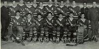 1968-69 AIAA Season