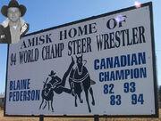 Amisk, Alberta