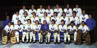 1978–79 Buffalo Sabres season