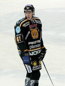 Anttila Marko Ilves