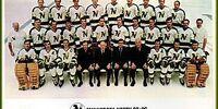 1970–71 Minnesota North Stars season