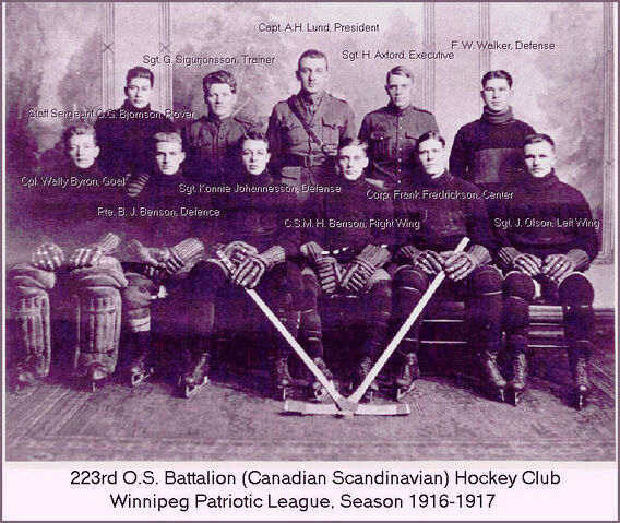 File:223rdbattalionteam.jpg