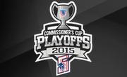 2015 FHL playoff logo
