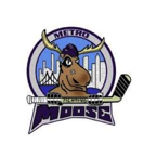 Metro Fighting Moose