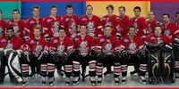 2011 AIHL season