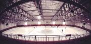 Lewis Arena