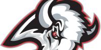 1996–97 Buffalo Sabres season