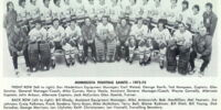 1972–73 Minnesota Fighting Saints season