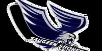 Saugeen Shores Winterhawks