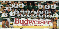 1982–83 Minnesota North Stars season