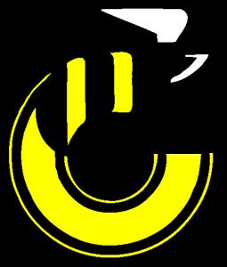File:Cincinnati Stingers Logo.png