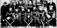 1929-30 COVL Season