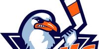 San Diego Gulls (2008–)