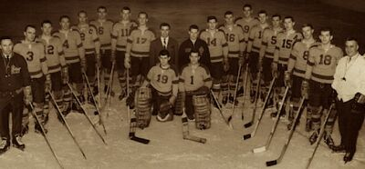 UM Bisons6465Hockey 620