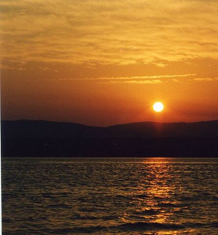 File:Deer Lake, Newfoundland and Labrador.jpg