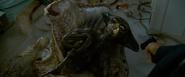 Alien autopsy 15
