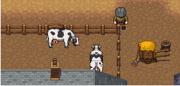 Cattlebreeder