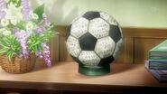 CS50 Kinako's soccer ball