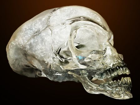 Crystal Skull Jones Crystal Skull
