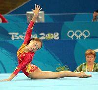 Li Shanshan
