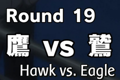 Hawk-vs-eagle