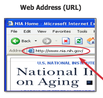 Image - Web address.png | The IT Law Wiki | Fandom powered by Wikia