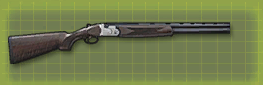 Duck gun c pic
