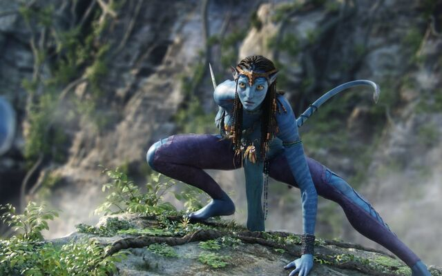 File:Avatar-neytiri-3-wallpapers 16289 1280x800.jpg